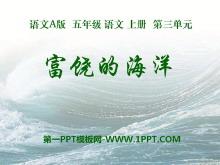 《富饶的海洋》PPT课件