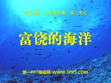 《富饶的海洋》PPT课件2