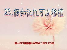 《假如记忆可以移植》PPT课件7