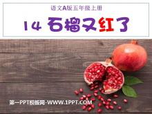 《石榴又红了》PPT课件2
