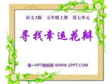 《寻找幸运花瓣》PPT课件4