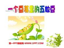 《一个豆荚里的五粒豆》PPT课件2