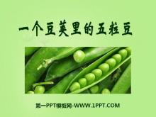 《一��豆�v里的五粒豆》PPT�n件4