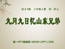 《九月九日忆山东兄弟》PPT课件8