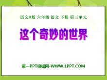 《这个奇妙的世界》PPT课件3