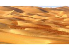 金黄色的沙漠幻灯片背景图片