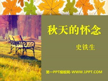 《秋天的怀念》PPT课件10
