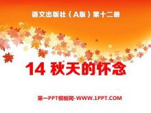 《秋天的怀念》PPT课件11