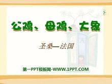 《公鸡、母鸡、大象》PPT课件2