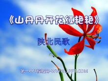 《山丹丹开花红艳艳》PPT课件4
