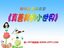 《真善美的小世界》PPT课件4