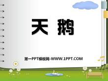 《天鹅》PPT课件3