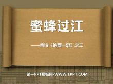 《蜜蜂过江》PPT课件3