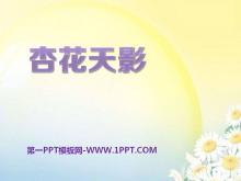 《杏花天影》PPT课件2