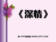 《深情》PPT课件