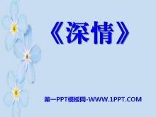 《深情》PPT课件2