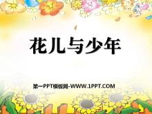 《花儿与少年》PPT课件2