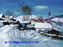 《新东北风》PPT课件