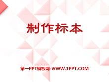 《制作标本》PPT课件3
