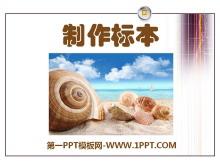 《制作标本》PPT课件5