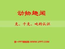 《动物趣闻》PPT课件3
