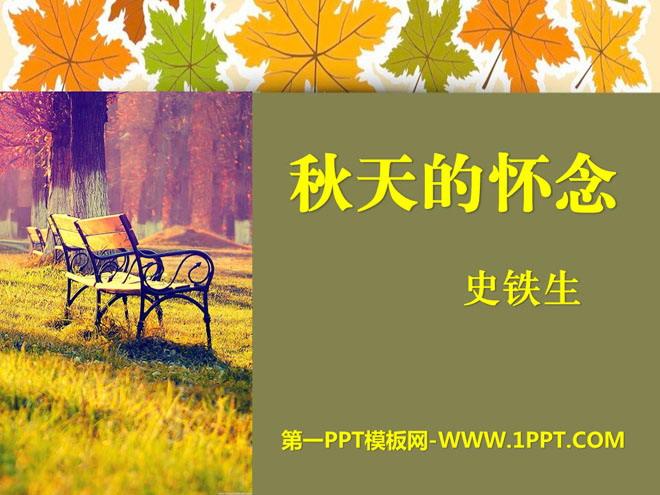 烂漫的点地梅说课稿_《秋天的怀念》PPT课件10 - 第一PPT