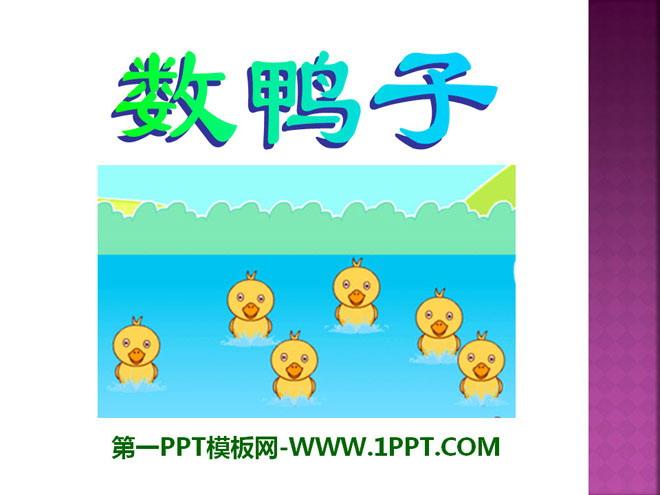 《数鸭子》PPT课件