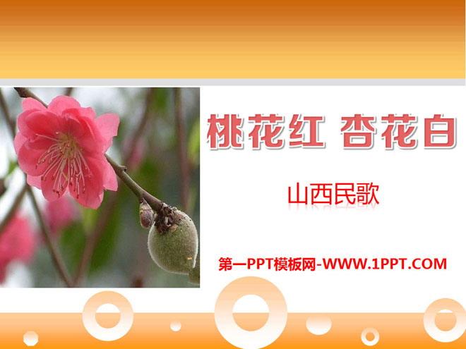《桃花红杏花白》PPT课件
