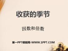 《收获的季节》PPT课件9