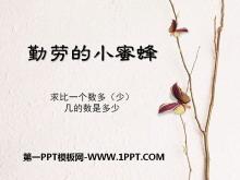 《勤劳的小蜜蜂》PPT课件6
