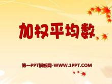 《加权平均数》PPT课件2