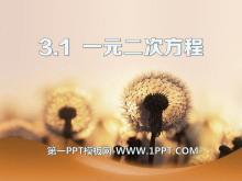 《一元二次方程》PPT课件6