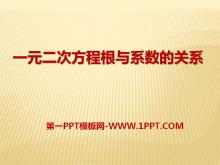 《一元二次方程根与系数的关系》PPT课件2