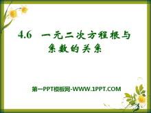 《一元二次方程根与系数的关系》PPT课件