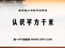 《认识平方千米》土地面积PPT课件2