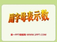 《用字母表示数》PPT课件6