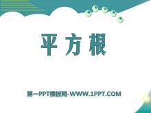 《平方根》PPT课件8