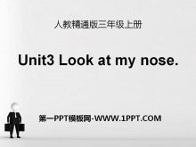 《Look at my nose》PPT课件3