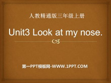 《Look at my nose》PPT课件5