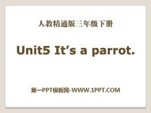 《It's a parrot》PPT课件4