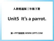 《It's a parrot》PPT课件2