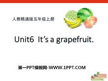 《It's a grapefruit》PPT课件2