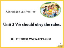 《We should obey the rules》PPT课件5