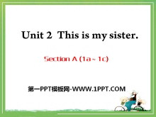 《This is my sister》PPT课件9