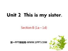 《This is my sister》PPT课件11
