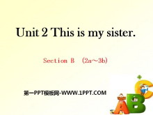 《This is my sister》PPT课件12