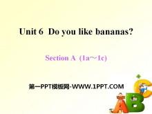 《Do you like bananas?》PPT课件16