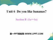 《Do you like bananas?》PPT课件19