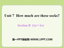 《How much are these socks?》PPT课件15