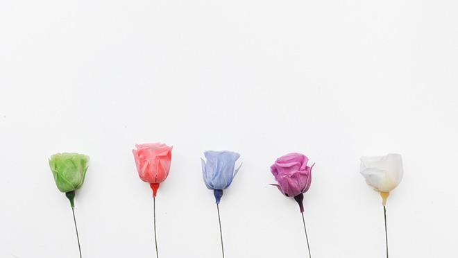 清新玫瑰花幻灯片背景图片